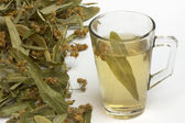 Linden tea in a glass cup — Stock Photo