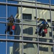 Window Washers — Stock Photo