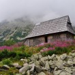 Mountain wooden hut — Stock Photo
