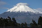 Cotopaxi Volcano, Andean Highlands of Ecuador — Stock Photo