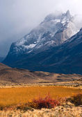 Autumn in Patagonia. Torres del Paine National Park Chile — Stock Photo