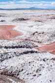Northwest Argentina - Salinas Grandes Desert Landscape — Stock Photo