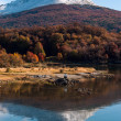 Stock Photo: Autumn in Patagonia. CordillerDarwin, Tierrdel Fuego