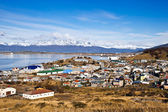 Ushuaia. Colourful houses in the Patagonian city, Argentina — Stock Photo