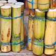 Stock Photo: Close up photo of stack of sugar cane sticks
