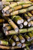 Close-up foto van een stapel van suikerriet stokken — Stockfoto