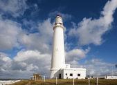 ラ パロマ灯台ウルグアイ — ストック写真