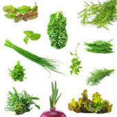 Mix organic salad leaves and salad onion springs — Stock Photo