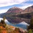 Autumn Colors in Lake Gutierrez, near Bariloche, Patagonia — Stock Photo #43460221