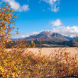 Autumn Colors in El Boliche, Bariloche, Patagonia, Argentina — Stock Photo #43487405