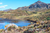 Andes. Cajas National Park, Andean Highlands, Ecuador — Stock Photo