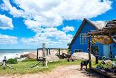 Diablo пляжа пунта-дель-, популярное туристическое место в уругвае — Стоковое фото