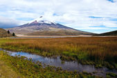Limpiopungo Lagoon at the foot of the volcano Cotopaxi — Photo