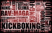 Kickboxing — Foto Stock