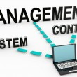 Content Management System — Stock Photo #24077313