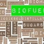 Biofuels — Stock Photo