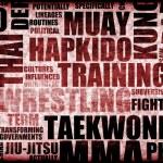 Tae Kwon Do — Stock Photo