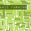 Organic Farming — Stock Photo #24176579