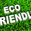 Eco Friendly — Foto Stock