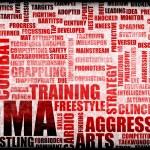 Постер, плакат: MMA
