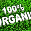 Stock Photo: 100 percent Organic