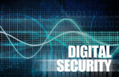 Digital Security — Stock Photo