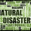 Natural Disasters — Stockfoto