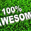 100 percent Awesome - Stock Photo