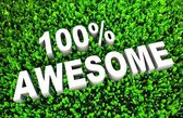 100 percent Awesome — Stock Photo