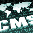 CMS Industry Global Standard — Stock Photo