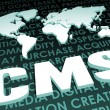 Stock Photo: CMS Industry Global Standard
