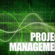 Royalty-Free Stock Photo: Project Management