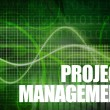 Project Management — Foto Stock #26593897