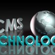CMS Technology — Stock Photo #27140255