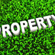 Stock Photo: Growing Property Wealth