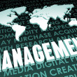 Management — Foto Stock #27366041