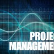 Stock Photo: Project Management of Company in Business