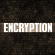 Stock Photo: Encryption