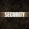 Security — Stock Photo #29978347