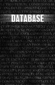 Database — Stock Photo