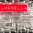Salmonella — Stock Photo