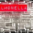 Постер, плакат: Salmonella