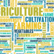 Agriculture Industry — Stock Photo