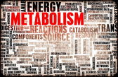 Metabolism — Stock Photo