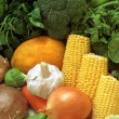 Pile of Vegetables — Stockfoto