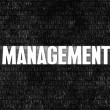 Stock Photo: Management