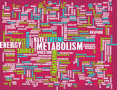 Metabolism as a Medical Health Exercise Concept — Stock Photo