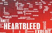 Heartbleed Exploit background — Stock Photo