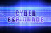 Cyber Espionage — Stock Photo
