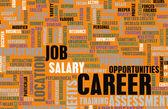 Career Word Cloud — Foto de Stock